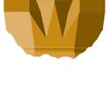 Hostingnl logo